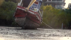 Wooden ship, boat, lying on its side at low tide, tied with ropes, a dog runs. Stock Footage