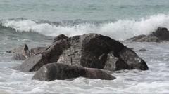 Waves on the  beach -  Isle of Lewis, Hebrides (UK) Stock Footage