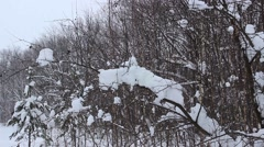 Heavy snowfall in February Stock Footage