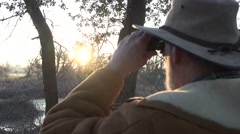 Wildlife marsh, sun shining through white beard Stock Footage