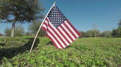 Small American Flag 4K Stock Footage