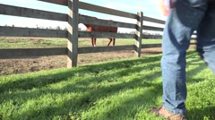 Rancher walking with shovel - stock footage
