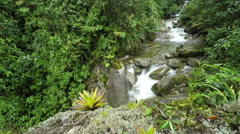 Rain forest river in Ecuadorian Andes, - stock footage