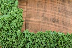 Curly kale leaves for border - stock photo
