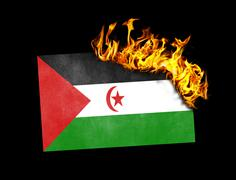 Flag burning - Western Sahara Piirros
