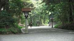 Japanese Forest Walkway Meiji Jingu - stock footage
