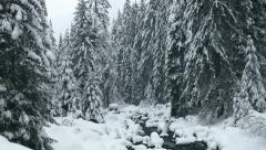 Snowy Mountain Landscape Stock Footage