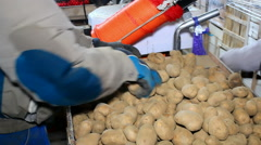 Packaged potatoes - stock footage