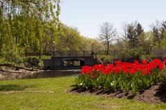 Beautiful park with flower bed and brook Stock Photos