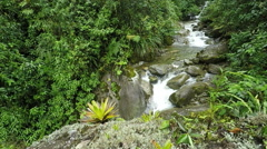 Rain forest river in Ecuadorian Andes, slow motion fixed camera, 120fps Stock Footage