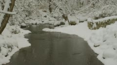 Stock Video Footage of View of creek during snowfall in Ashland