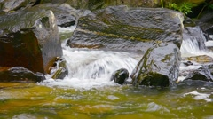 Video 1080p - Mountain Stream Burbling over Rocks with Sound Stock Footage