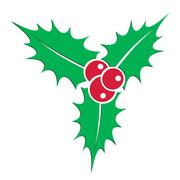 Symbol of christmas holly berry plant vector illustration - stock illustration