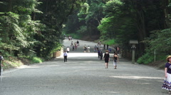 Stock Video Footage of Walkway In Japanese Forest At The Meiji Jingu