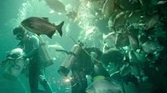 CHIANG MAI, THAILAND - CIRCA DEC 2013: Divers Feeding Fish in the Aquarium Ex Stock Footage