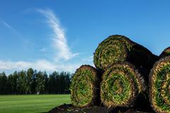 Rolls of fresh grass turf Stock Photos