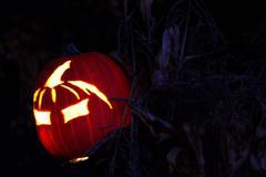 Halloween Jack-o-Lantern - stock photo