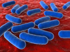 Bacteria - stock illustration
