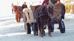 Horses that are harnessed to the Hutsul cart. Stock Footage
