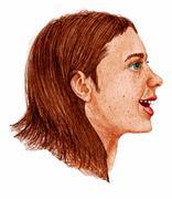 girl face dwg - stock illustration