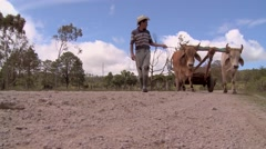 Farmer and Oxen 4 Stock Footage