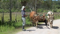 Farmer and Oxen 8 Stock Footage