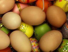 Colorful Easter eggs in the company of ordinary eggs. Stock Photos