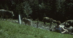 Sexy Bra Woman with Cows in Austria Mointains Alps 70s 16mm Stock Footage