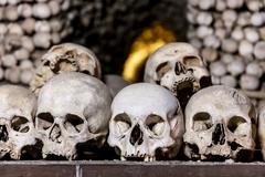 Human skulls in the basement crypt. Soft focus Stock Photos