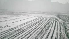 Winter agricultural fields after snow in the great North China Plain Stock Footage