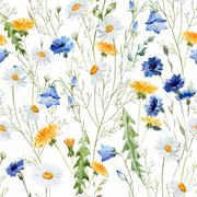 Wildflowers - stock illustration