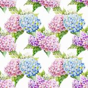 Hydrangea pattern Stock Illustration