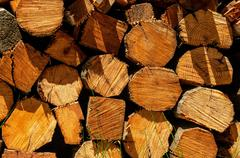Pile of chopped fire wood Stock Photos