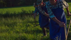 Local farmers mowing with scythe and same rhythm  - stock footage
