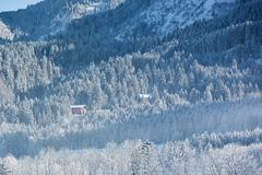 Alpine hut in wintery forest, Bavaria, Germany Stock Photos