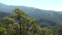Mount Ida, (Kaz Dağları) Turkey Stock Footage