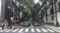 4k People crosswalk street tilt Jacaranda Trees Funchal city Footage