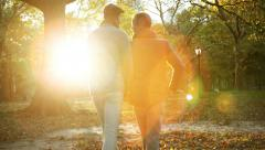 Young Gay Couple Walking Away from Camera in Central Park in New York in Sunset Stock Footage