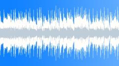 Vintage Blues (loop 04) Arkistomusiikki