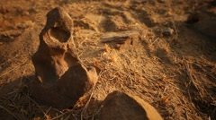 Day shot of rock Hill Stock Footage