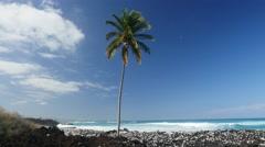 Kohala Coast, Island of Hawaii Stock Footage