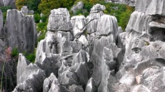 Shi Lin stone forest national park. Kunming. China. Stock Footage