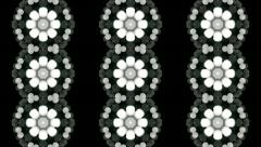 Amazing floral kaleidoscopic pattern with three lines of snowflakes. - stock footage