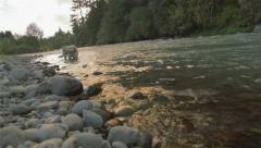 Golden lab plays in water 2 Stock Footage