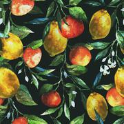 Lemons and oranges Stock Illustration