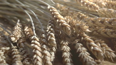 Stages from Wheat to Bread Stock Footage