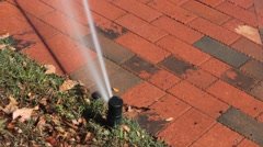 Lawn Sprinkler Watering Grass near Brick Sidewalk - stock footage