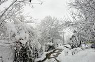 Cold winter day Stock Photos