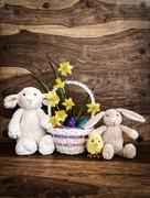 Bunny, Lamb and chick with Easter Basket - Rustic Stock Photos