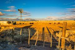 Evening light on a farm near Albuquerque, New Mexico. - stock photo